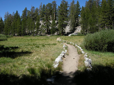 The trail crosses another beautiful meadow