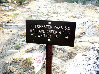 Mt Whitney finally appears on the mileage signs - we're getting close!