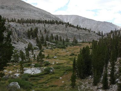 Meadows above Crabtree Ranger Station