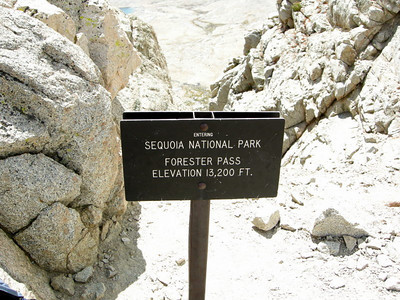Wahoo - I've been in Yosemite, Kings Canyon, and now Sequoia NP on this trip.