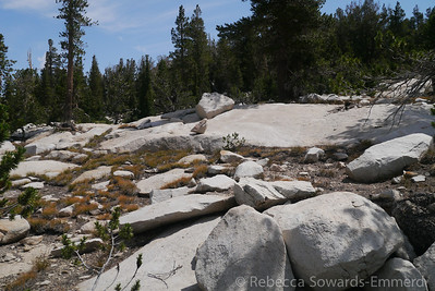 Eventually we get out of the duff and find some granite. It gets a bit slabby which makes for some great walking.