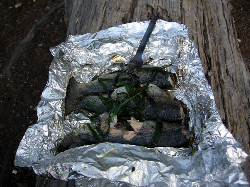 Fishies cooked over the fire with wild onion<br /> <br /> A little salt and cajun seasoning = a great dinner!