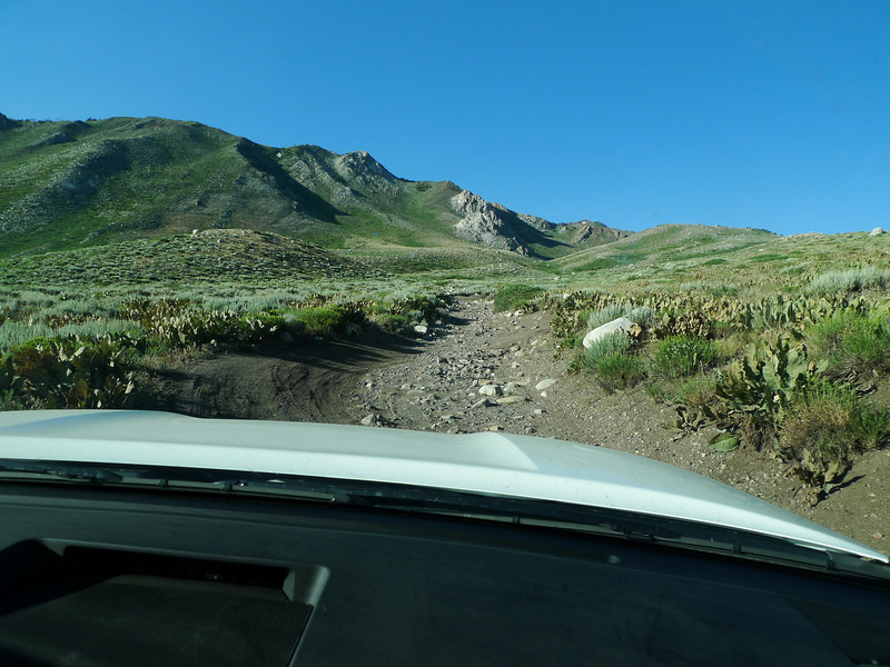The road to Laurel Lakes requires 4x4 and good clearance and the ability to use it. It's rocky and bumpy. Also, fun. Especially as the passenger. Our new Tundra Rock Warrior did awesome.