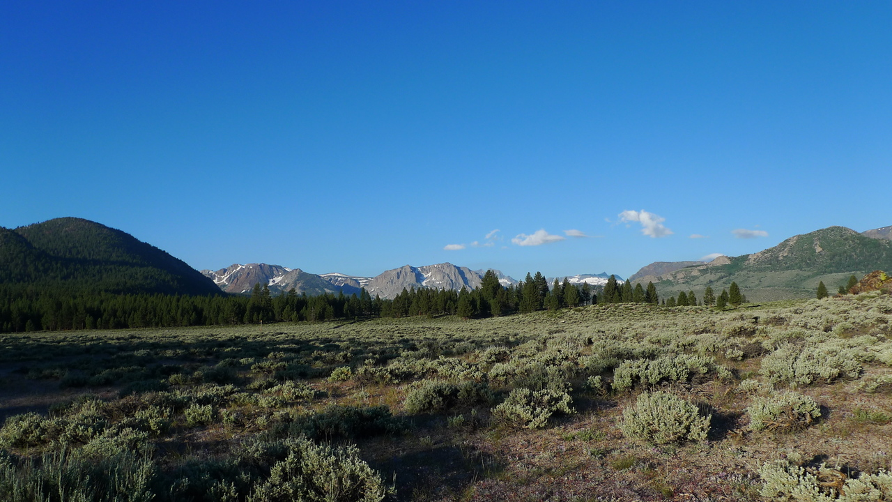 Saturday morning from our dispersed campsite just east of June Lake. I love all the open forest service and blm land out here - turn down a dirt road and POOF - campsite.
