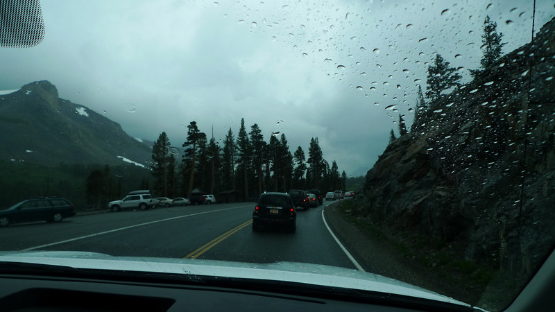 There was a ridiculously long backup at the Tioga Pass entrance station.