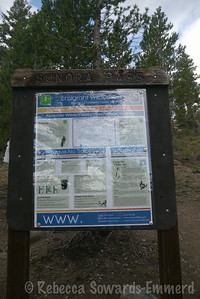 Traditional Trailhead sign - Sonora Pass/Emigrant Wilderness