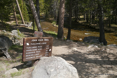 I started off on the loop from the Dog Lake trailhead. I remember this sign from when I started the JMT from here several years ago.