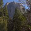 El Capitan from the 'wood yard' - the starting point of the old road.
