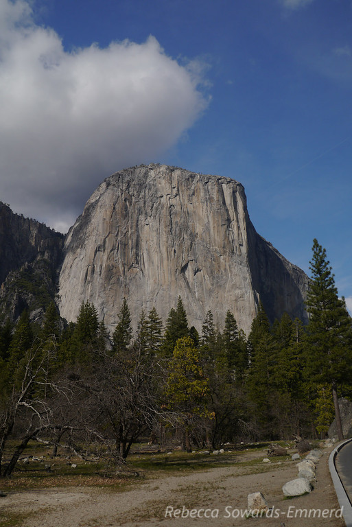 El Capitan on my drive in. Still can't resist stopping and taking in the views despite my many visits.