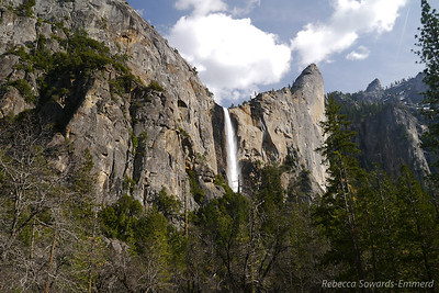 I haven't been to the Valley since a wintery weekend last winter, so it was lovely to drive in and see the blasting Bridalveil Falls under the warm sun. 70 degrees on an evening in April!