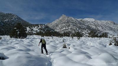 Breaking trail. It was really fluffy stuff so we sank in a bit - not like the normal sierra cement.