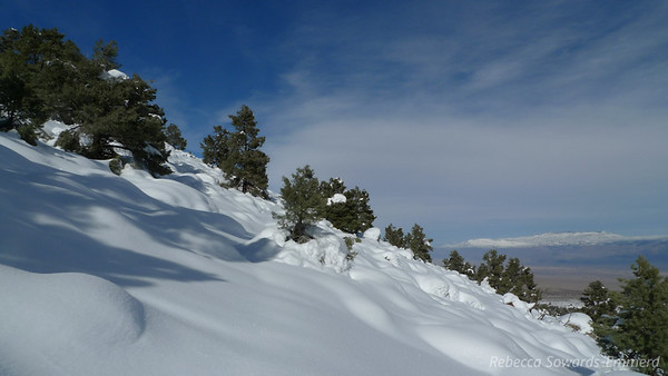 Fresh, unbroken snow. Which we were sinking up to our thighs in, even with snowshoes.