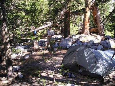 David at camp