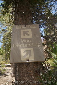 The easy trail was difficult enough for my day.