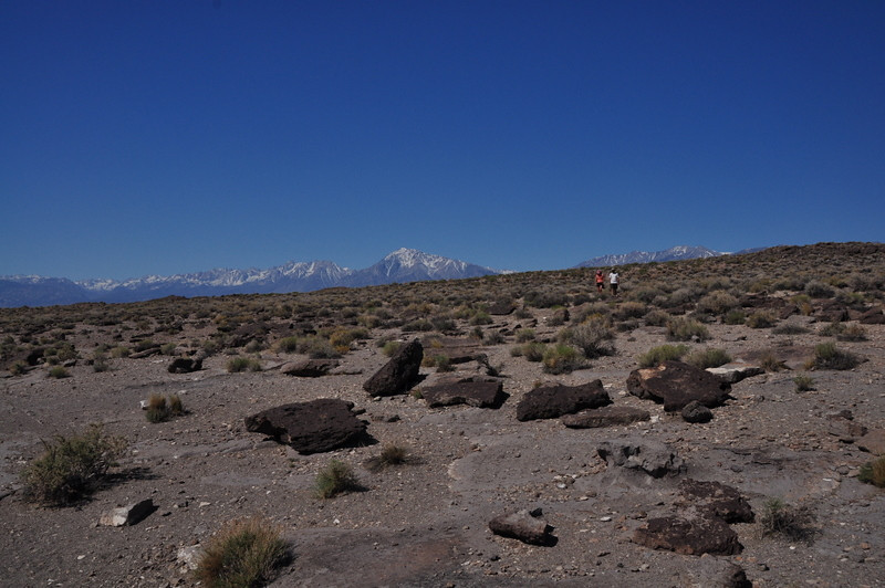 Sierra crest in the distance - mt tom is at the center