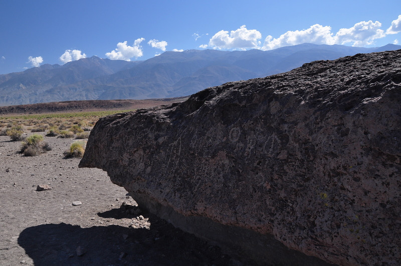Petroglyph Panel and the White Mountains