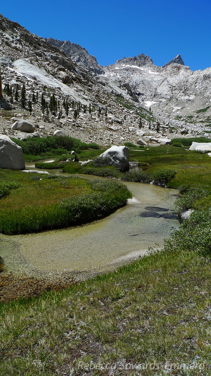 Creek in Lost Canyon