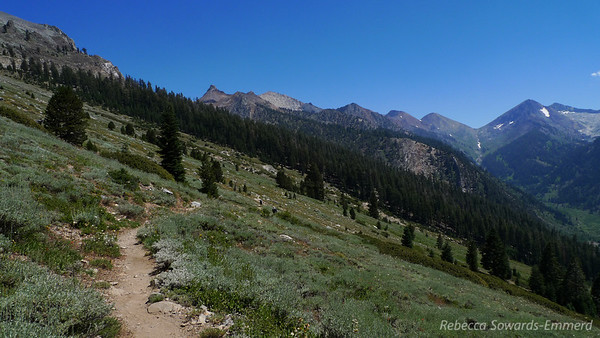 Trail to Timber Gap