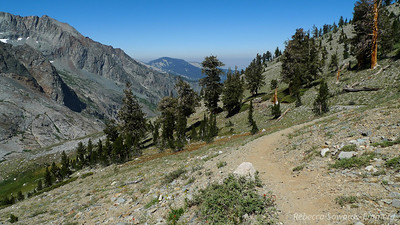 Leaving the last set of trees and starting up the last 2000 ft to Black Rock Pass