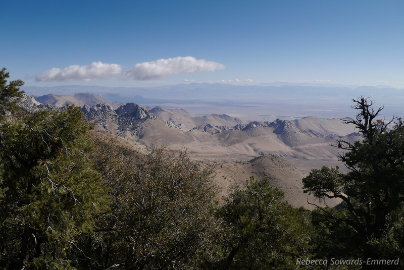 Looking back on Indian Wells Canyon