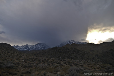 We found an excellent little campsite off a spur road from which we watched this storm stall above Mt Tom.