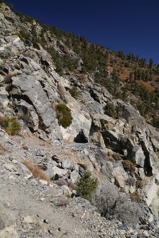 On the PCT - nice rock in here.