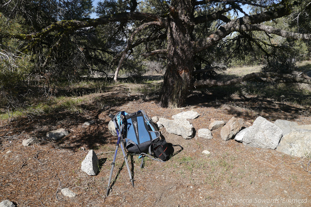 Dry campsite at the PCT