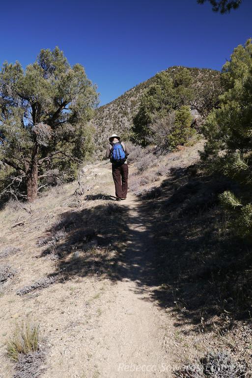 Yay, trail!