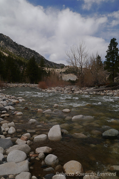 We had to go through Tahoe since the passes were closed, but at least that gave us the opportunity to stop along the pretty walker river.