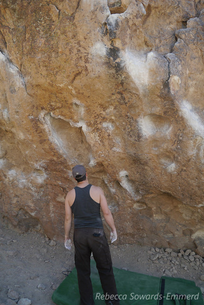 Next we moved on to the shaded side of the Savannah Boulder. I worked on a V2 traverse and here David is contemplating a V4.