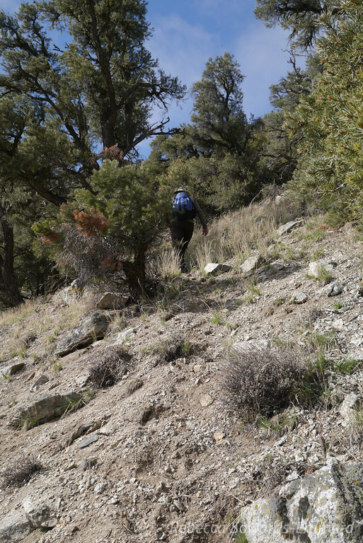 Trying to capture the steepness.