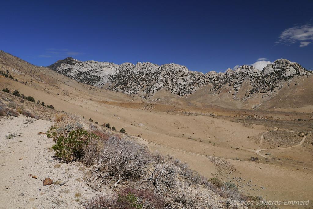 Owens Peak