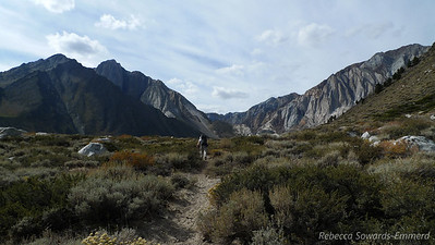 Heading up the trail, starting at about 7700 ft.