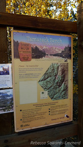 Starting up Mt Morgan from the Tamarack Bench Trailhead (Rock Creek Lake)