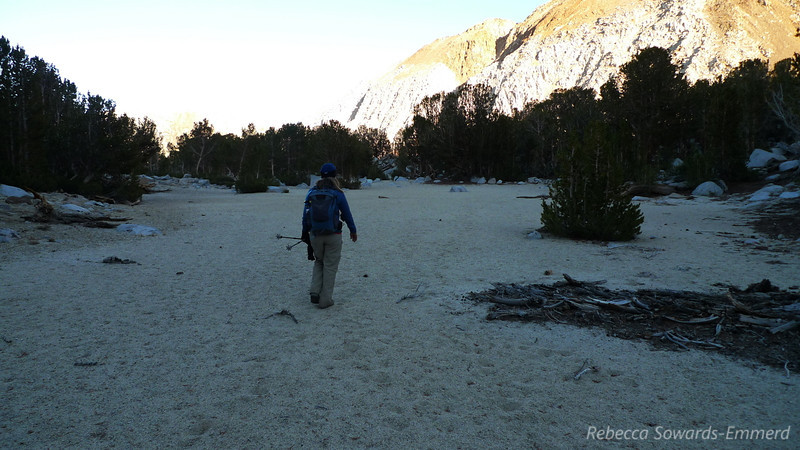 On one of the big open sandy flats. I really enjoyed this little off-trail pocket.