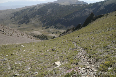 Better look that shows the steepness of the use trail.