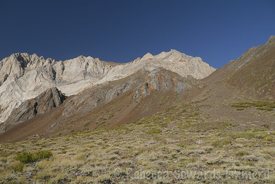 Mt Morrison. Difficult to pick out the route from down here, but we just start up use trail.