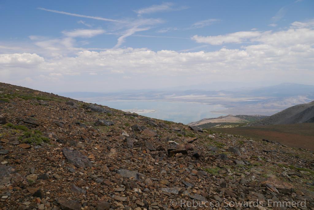 I catch my first view of Mono Lake far below.