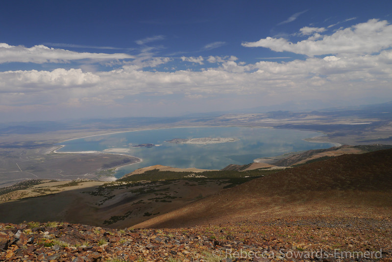 There is a fantastic view of Mono Lake from up here!