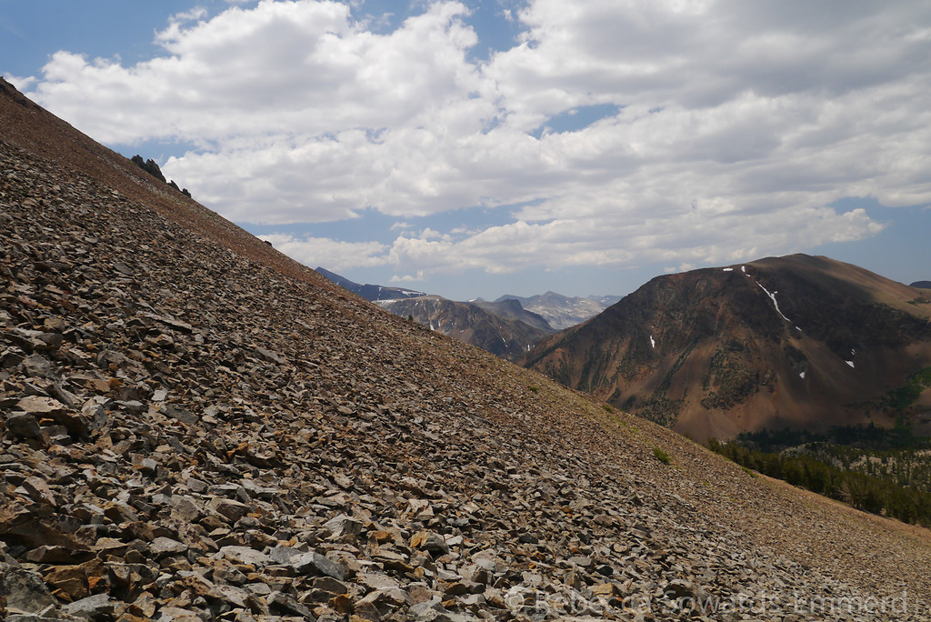 Another shot of the slope. Mt Dana peeking out in the distance.=