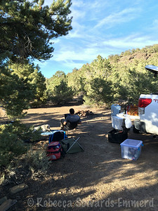 It was super hot in the valley so we drove into the White Mountains to find a campsite where we could escape the 100 degree temps. We found a terrific dispersed spot for the night.