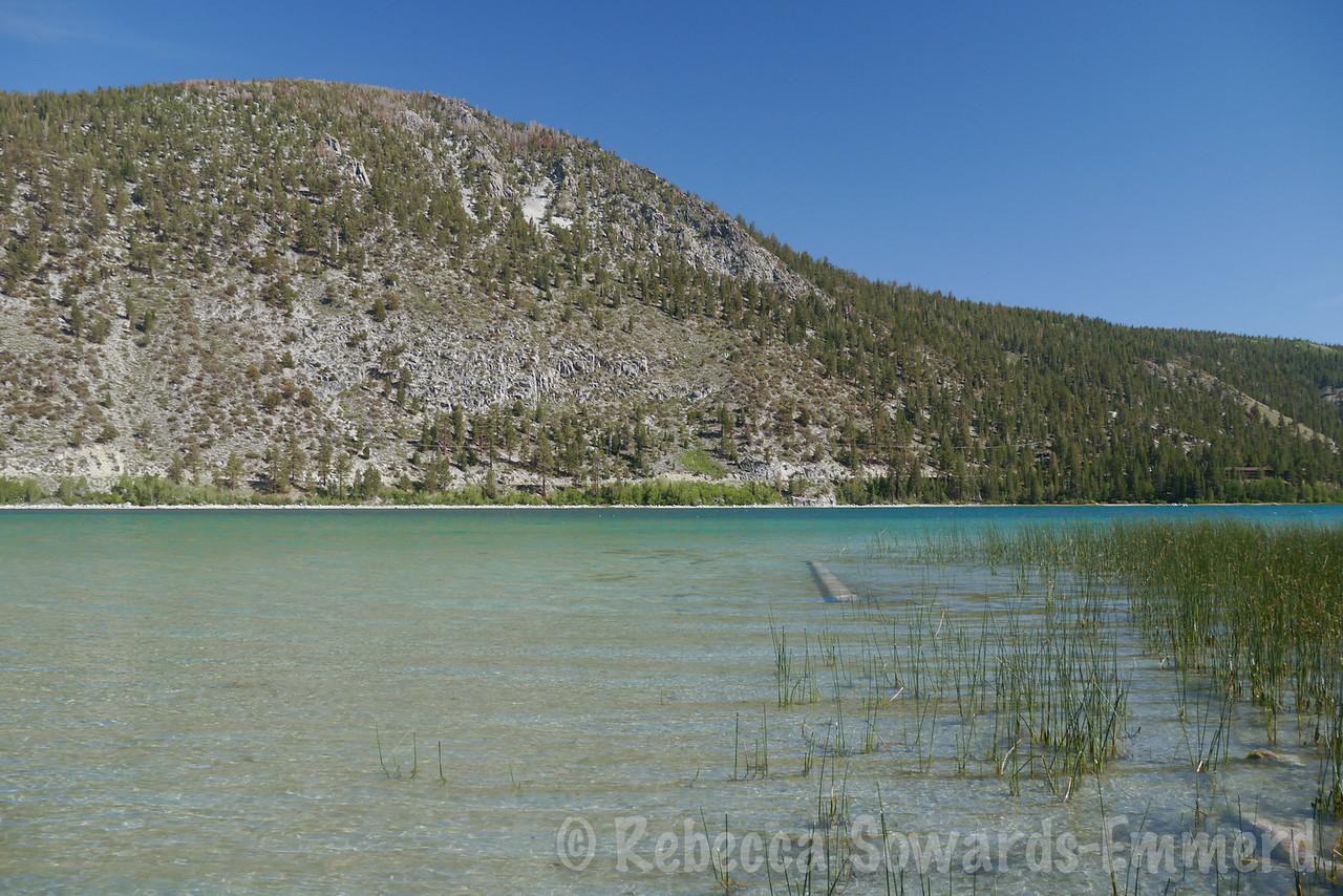 June Lake on a beautiful day.