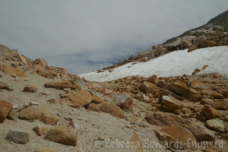 I was surprised to find a snow field still hanging on at Mono Pass.