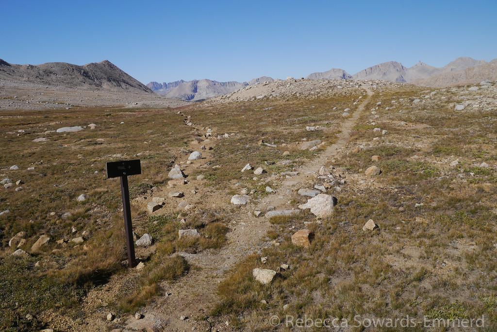 Old trail, new trail.