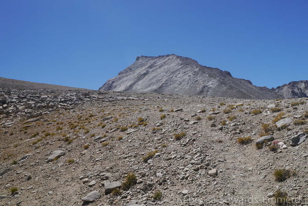 After setting up camp we head towards Tyndall. A small use trail rises from the lake but it fades to nothing pretty quickly. Our route will be the rib that's running up the middle of the face ahead of us.