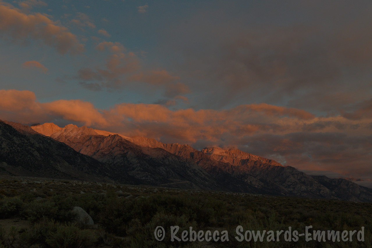 Sunday morning, I wake up in the back of the pickup to this sunrise over the Sierra.