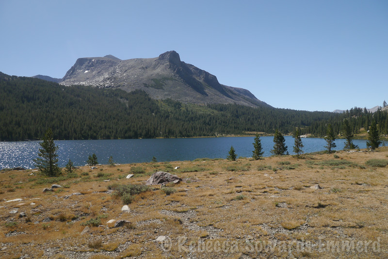 The next day, I took a rest day and did some fishing on Tioga Lake below Mt Dana