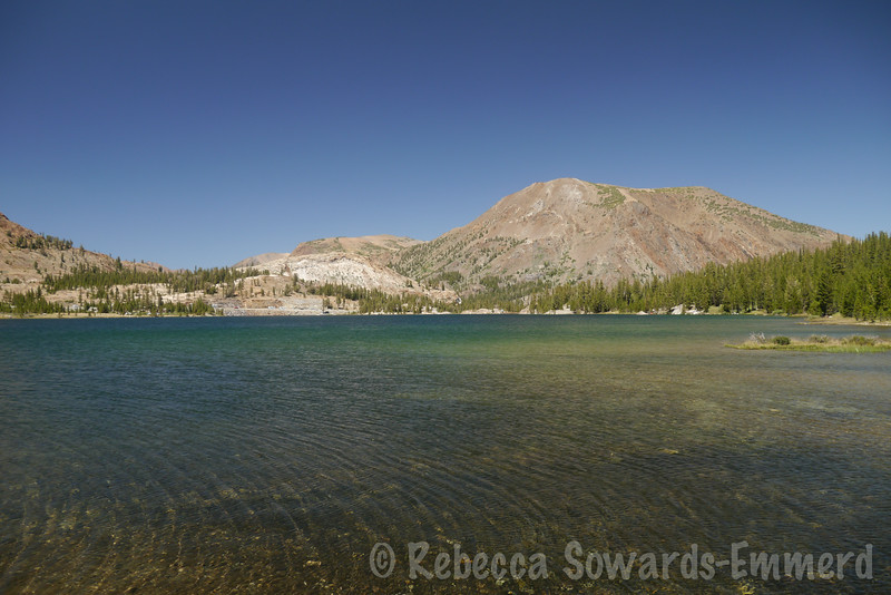 Tioga Lake and Tioga Peak. Beautiful rest day with my boys!