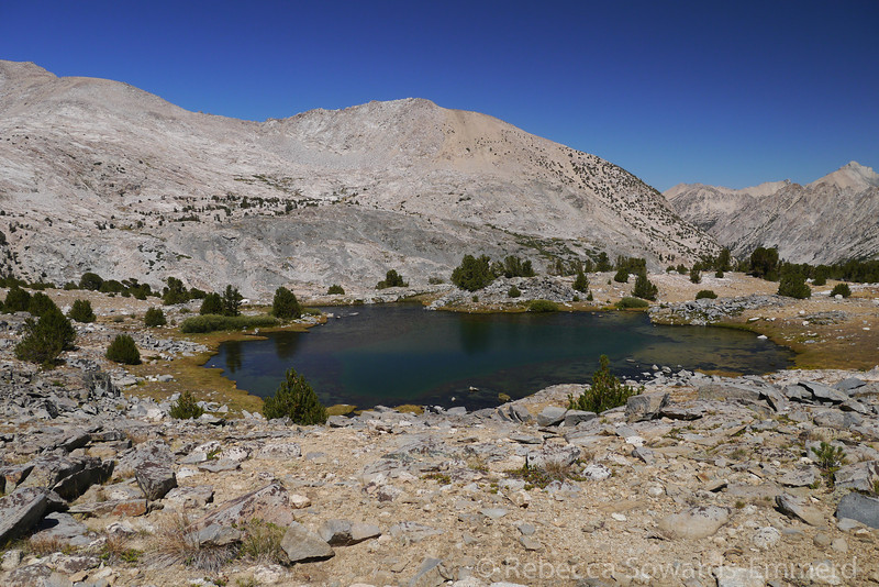 Unnamed lake on the way to Forester Pass.