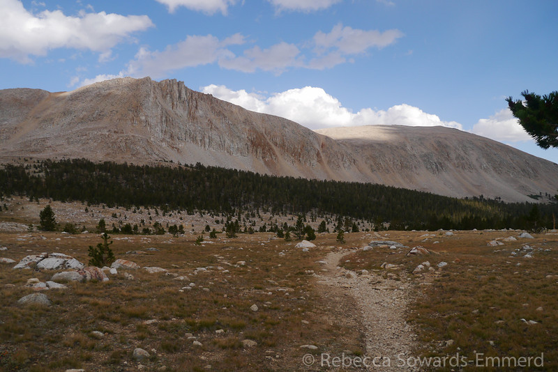 Approaching Tyndall Creek bear box/popular camping area on the JMT. We briefly rest and half heartedly look for a campsite among the busy sites. Despite being tired, we pushed on to the top of the next rise in order to get off trail (and away from people) at a small lake.